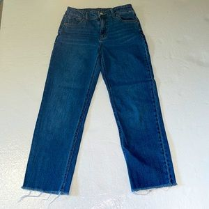 Wild Fable High Rise stretch Ankle Jeans